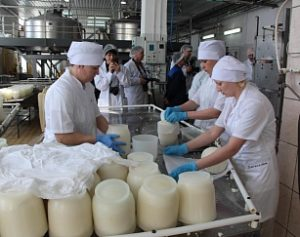 Столица молока Барнаул 1