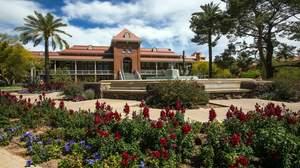 University of Arizona2
